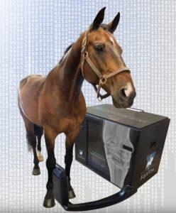 Переносная система томосинтеза для конного рынка
