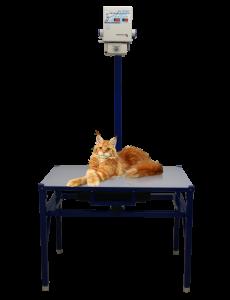 Новый компактный универсальный цифровой малодозовый комплект рентгеновского оборудования Мейн-кун (стол маленький)